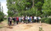 Сад памяти 5